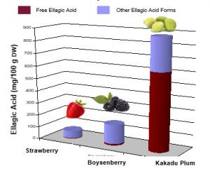 Ellagic acid in Kakadu Plums